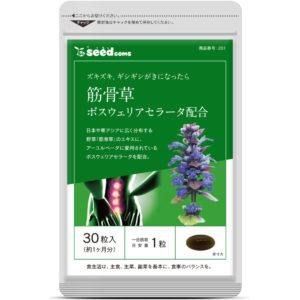 筋骨草 シードコムス seedcoms
